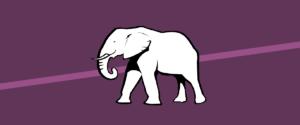 white elephant meaning explained